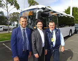 p14-Dominello-buses_s